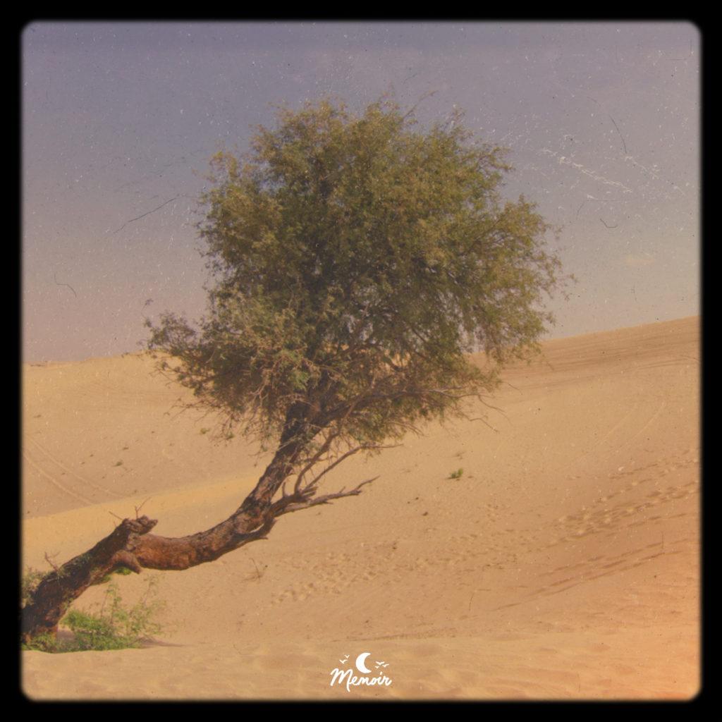 A Journey Home | Chillhop.com